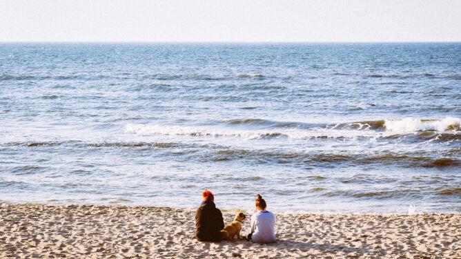 Wybierasz się nad polskie morze? Zobacz, gdzie woda jest najczystsza
